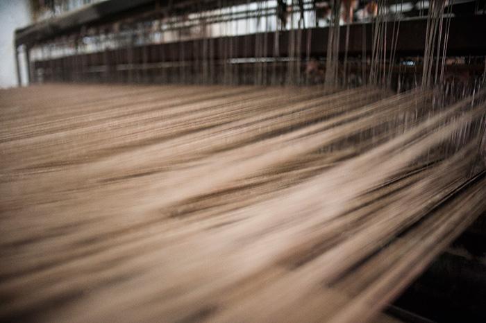 A história do algodão colorido da Paraíba