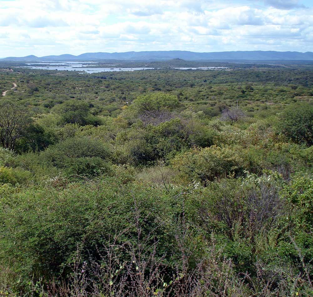 Planalto da Borborema. Itaporanga, cidade do Vale do Piancó, na Paraíba. Ao fundo, açude Coremas.